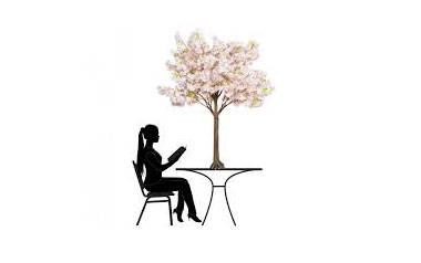 Peach Blossom Tabletop Tree for Hire