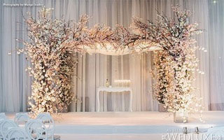 Cherry Blossom Tree Arch for Hire in Cape Town