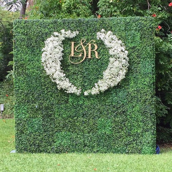 Wedding Ivy Plant Wall for Hire in Cape Town
